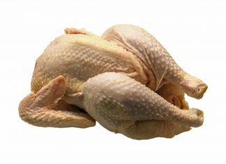 drób kurczak