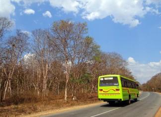 bus-276136_1280