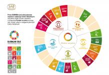 Globalne cele ONZ