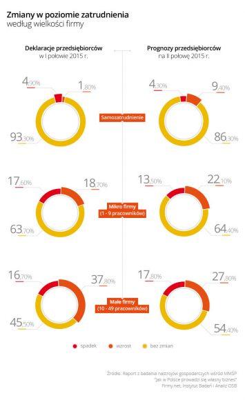 Rys. 2 - Zmiany w poziomie zatrudnienia według wielkości firmy
