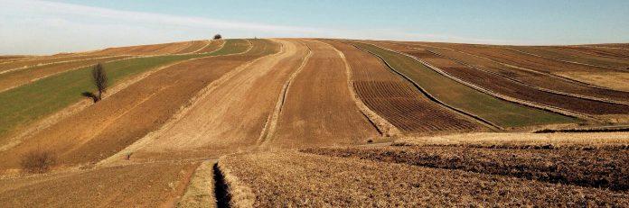 pole rolne rolnik rola