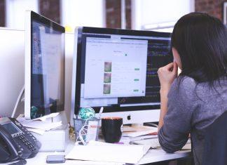 programista komputer informatyk