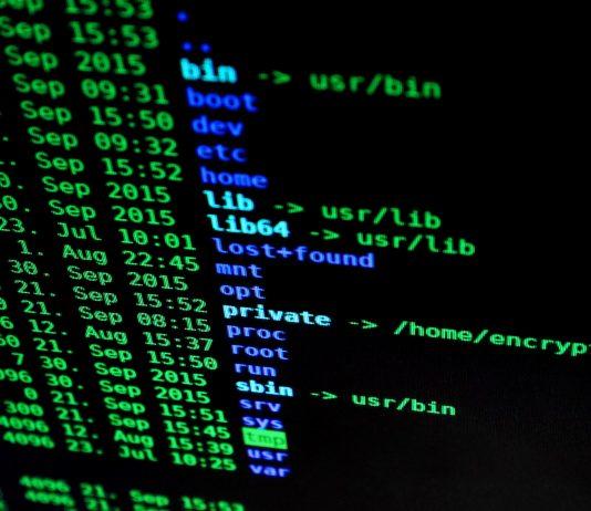 kod bezpieczeństwo programista