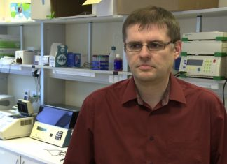 Polskie firmy biotechnologiczne pracują nad stworzeniem innowacyjnych leków i terapii. Problemem jest brak funduszy