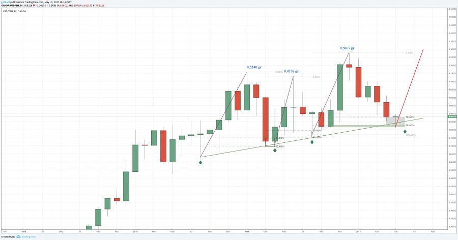 kurs złotego do i dolara w dłuższej perspektywie