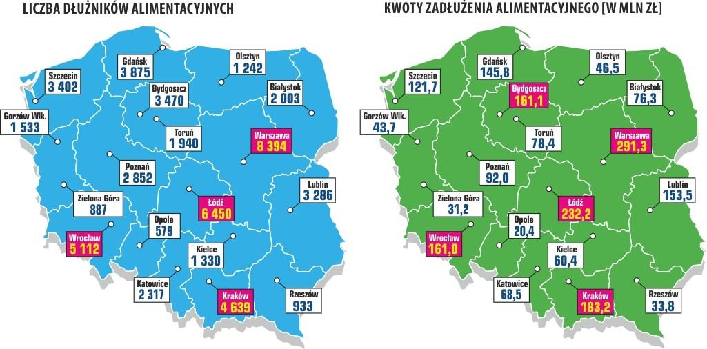 Zaległości alimentacyjne Polaków 7