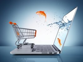 goldfish in cart – e-commerce concept