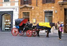 carriage-657937_1920