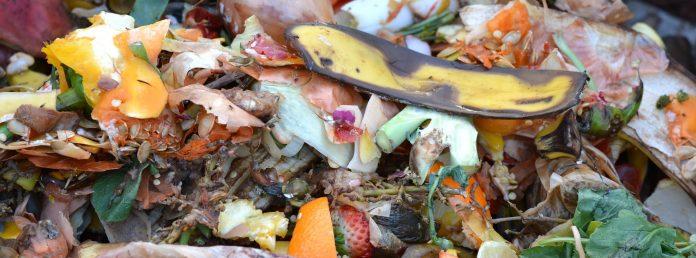 jedzenie stare żywność śmieci