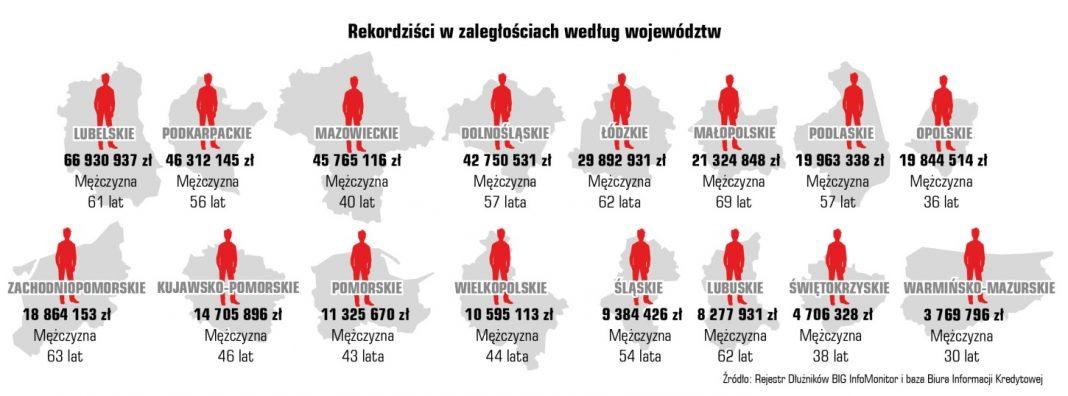 Indeks Zaległych Płatności Polaków 8