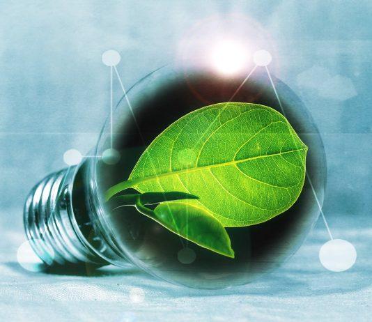 oze ekologia zielona energia