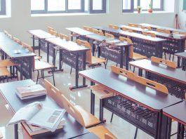 szkoła studia edukacja