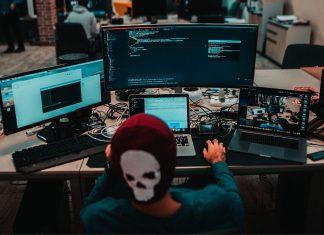 programista internet
