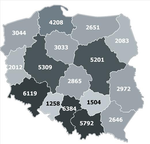 Elektromobilność w polskich miastach 2