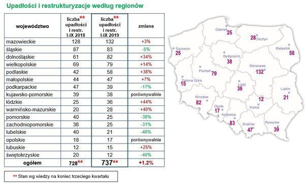 CHARAKTERYSTYKA UPADŁOŚCI I RESTRUKTURYZACJI w regionach