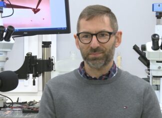 Polscy naukowcy badają interakcje koronawirusa z ludzkimi komórkami. Chcą umożliwić szybsze testowanie leków