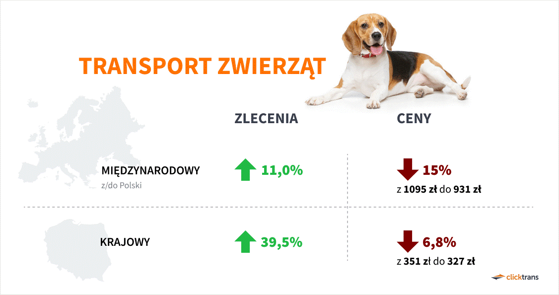 transport zwierząt