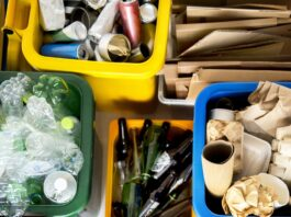 śmieci ekologia