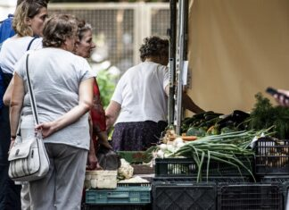 warzywa zakupy stragan