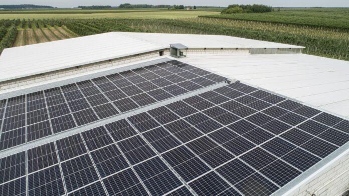Energetyka słoneczna stała się opłacalnym biznesem. W tym roku obroty branży mają wzrosnąć o 25 proc.
