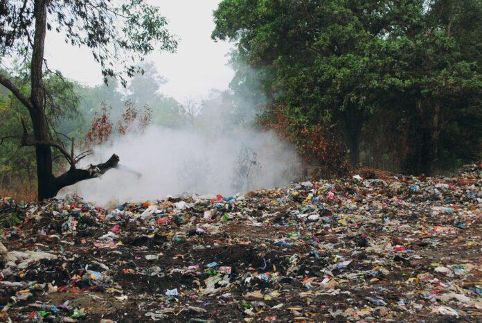 śmieci wysypisko
