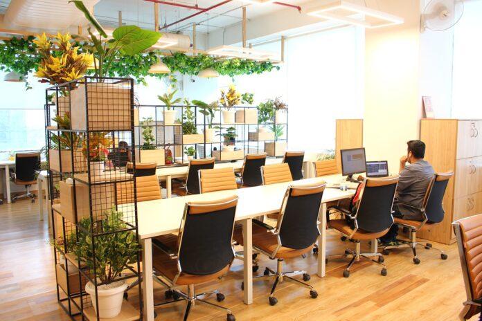 coworking wirtualne biura