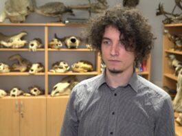 Nowe technologie przyspieszają odkrycia w paleontologii. Dzięki modelowaniu i drukowi 3D udało się dokładnie zbadać żuchwę prassaka z Grenlandii