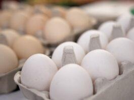 70 proc. Polaków woli kupować jaja z wolnego wybiegu. Na preferencje konsumentów odpowiadają największe firmy z sektora spożywczego, w tym Lubella [DEPESZA]