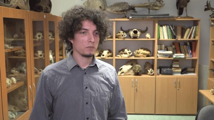 Odnajdywane w Polsce skamieniałości rzucają nowe światło na prastare zwierzęta. Pozwalają też przewidzieć zachowanie środowiska przy zmieniającym się klimacie