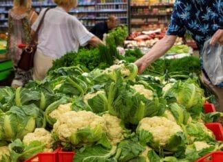 warzywa sklep