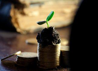 inwestycja pieniądze